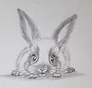 rabbit baby light.jpg