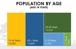 Population by Age.PNG