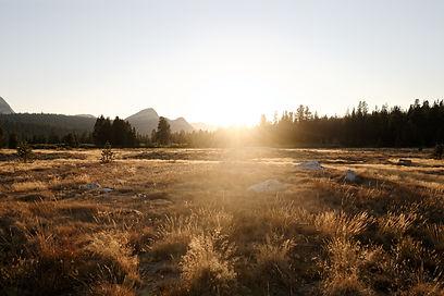 1284-tuolumne-meadows-credit_damian-rile