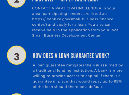 Small Business Disaster Relief Loan Guarantee Program