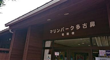 DSC_0236-1.jpg