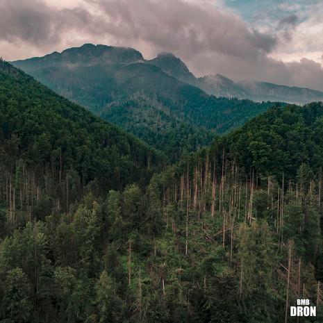 Góry z drona