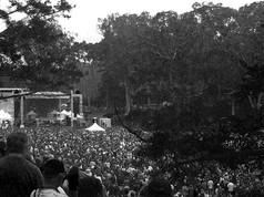 Hardly-Strictly-Bluegrass-Festival-black