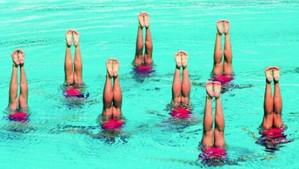 Rappel planning groupes natation artistique
