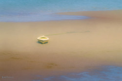 Low Tide Provincetown Harbor Outer Cape-5489