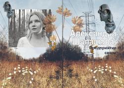 A_Shalashova_Predpriatie_svyazi_2