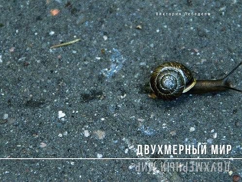 """Виктория Лебедева """"Двухмерный мир"""""""