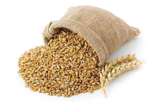 Пшеничный темный солод IREKS ( IREKS Weizen Malz Dunkel) - 14 - 18 EBC