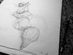 Gourd Drawing