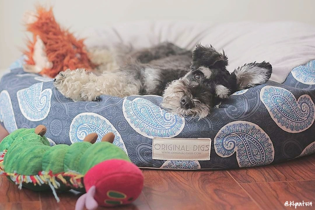 Paisley Blue Pet Pouf