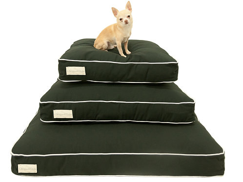 Black with White Trim Dog Bed