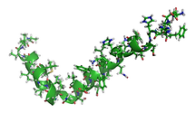 1200px-Amyloid-beta-42_1IYT.png