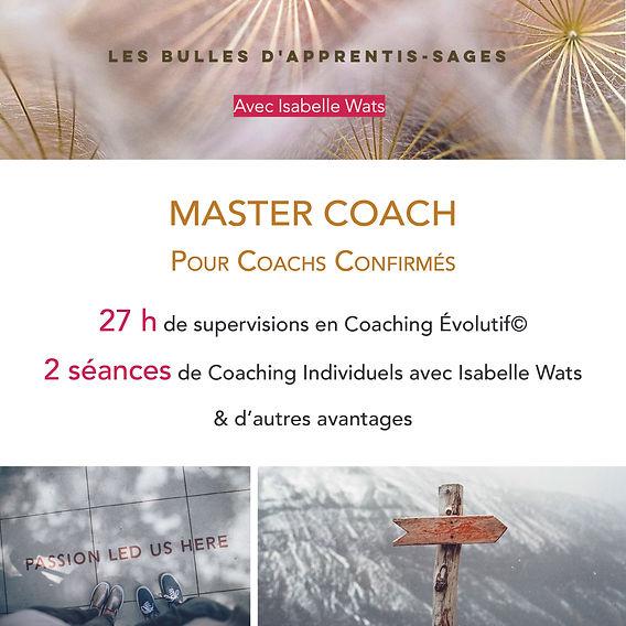 Visu Master Coach.jpg