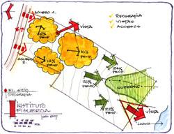 Topographic analysis