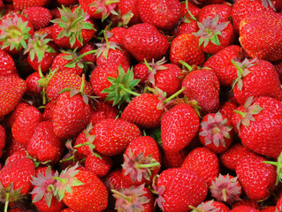 Notre billet radio du 18 mai: la fraise et ses richesses