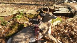 Buck killed by Gary Haas