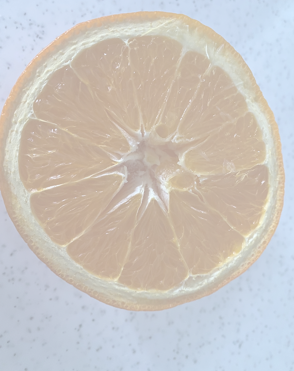 orange_edited_edited.png