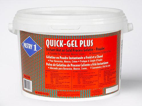 Quick Gel Plus