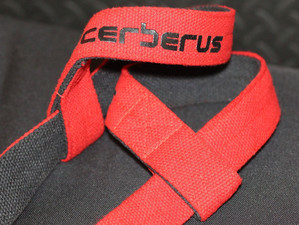 Cerberus Has What You Need!