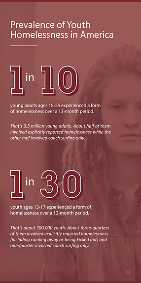 Prevalence of Youth Homelessness Image.p
