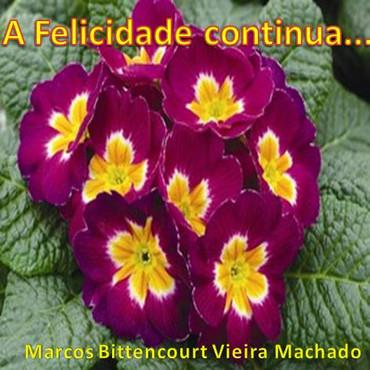 A Felicidade Continua - Marcos Machado