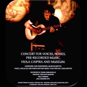 Concert for voices, noises, pre-recorded music, viola caipira and museum (Marcos Bentes e convidados)