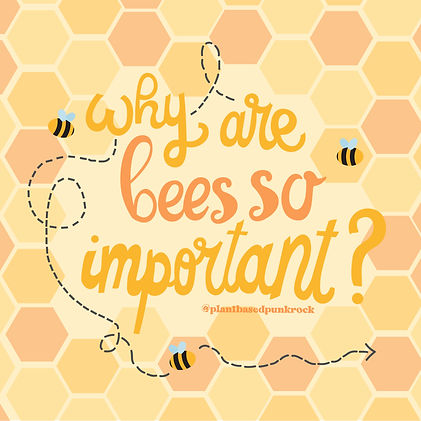 Why Are Bees Important? -01.jpg