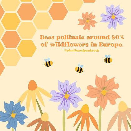 Bees 3-01.jpg