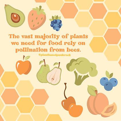 Bees 2-01.jpg