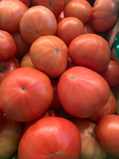 Red tomatoes from the field