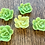 Thumbnail: Honeydew wax flowers