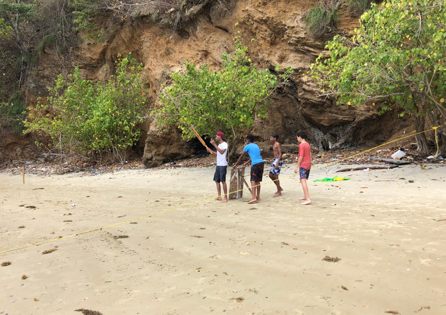 RestDay Beach Cricket