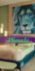 Plissada .png