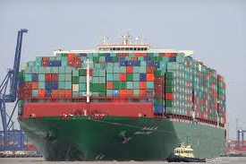 Shipping artificial grass