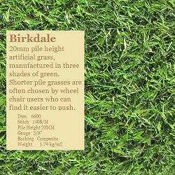 Birkdale250