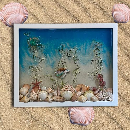 Sea Turtles and Shells