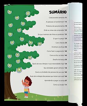 L02 - Sumario Mockup Half Open Top View.png