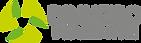 Logo_DINHEIRO_PARA_SEMPRE_horizontal.png