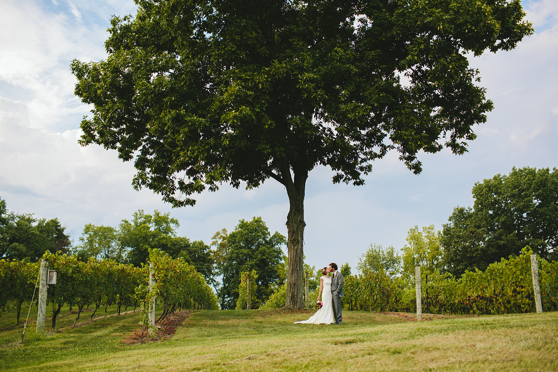 Monterre Vineyard Wedding