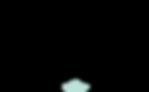Logo2019b.png