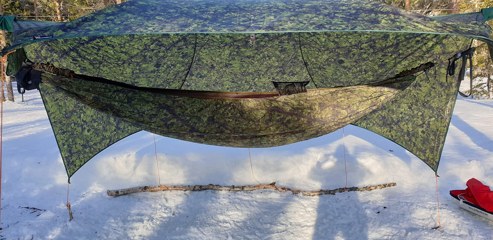 Fallen Branches photo by Pål Kenneth Løken.