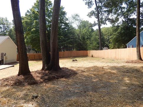 Mostly fenced backyard
