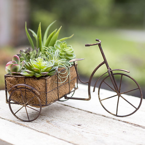 French Bicycle Flower Holder