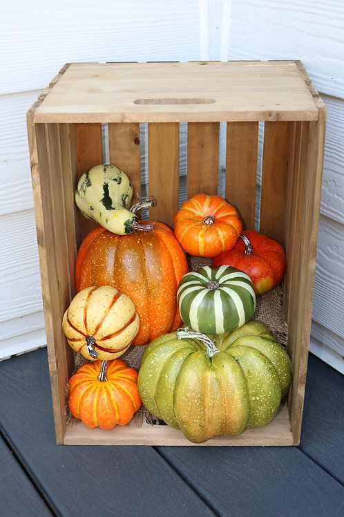 Farmstand Pumpkins and Gourds