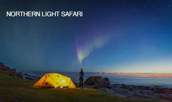 Northern light safari