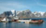 Fiske i Lofoten.jpg