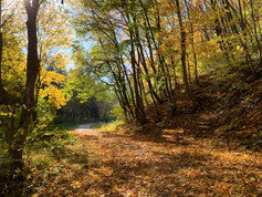 Herbst in Heiligenkreuz