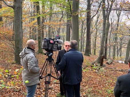 1.11.2019 / 19 UHR ORF Heute berichtet über Naturbestattung im Klosterwald Wien Kahlenberg