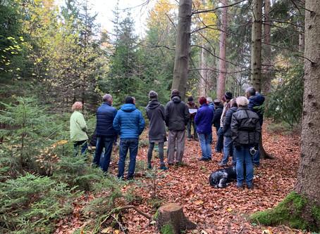 8.12. um 14 Uhr Waldführung Klosterwald Kahlenberg