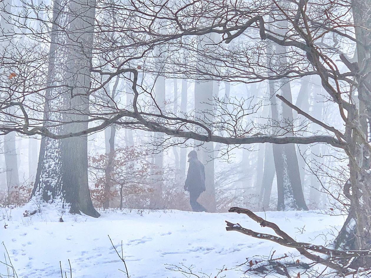 Kahlenberg im Winter